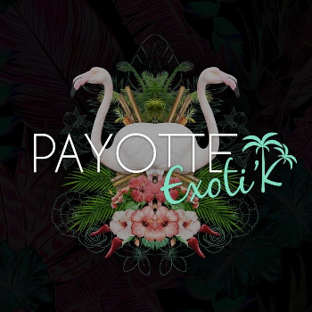 Photo Payotte Exotik